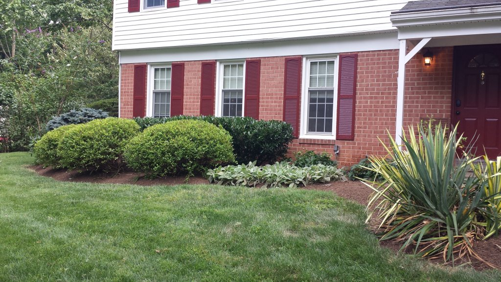 Virginia Lawn Maintenance
